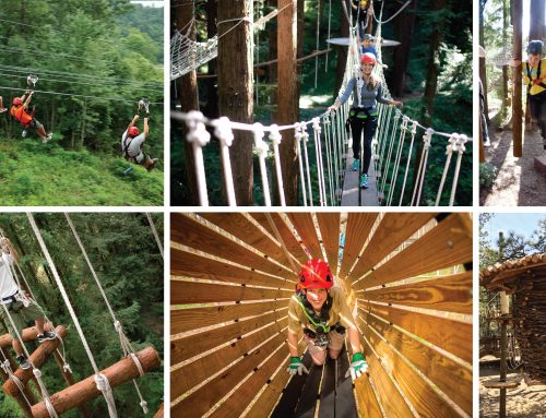 Ziplines, Challenge Course Among Options for Aerial Adventure Park
