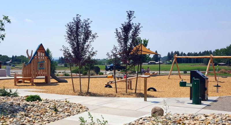 Pine River Library Park Trees
